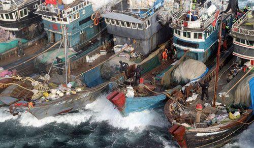 Trung Quốc lại đơn phương cấm đánh bắt cá ở Biển Đông - Ảnh 1