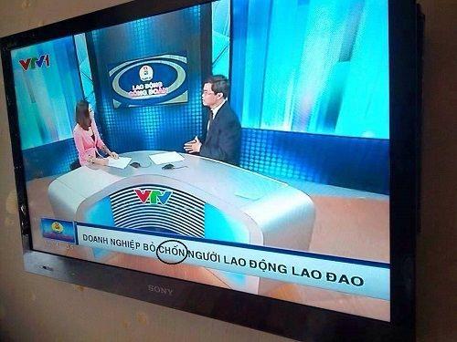 VTV sai lỗi chính tả, MC truyền hình hồn nhiên... văng tục - Ảnh 3