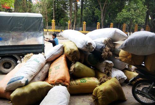 Bí ẩn thương lái Trung Quốc mua gom rêu đá với giá cao - Ảnh 1