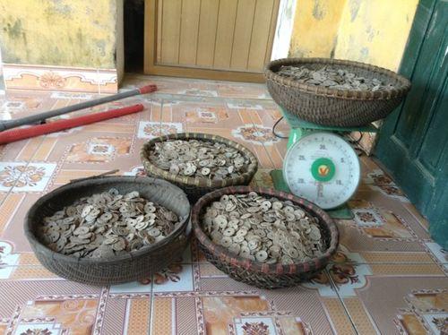 Phát hiện 50kg tiền cổ khi đào đất xây bể nước - Ảnh 1