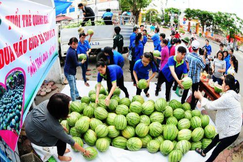 Tỉnh đoàn bị nghi ăn chặn tiền dưa hấu: PCT Quảng Ngãi nói gì? - Ảnh 1