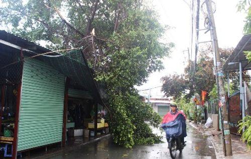 TP.HCM: Mưa giông kéo sập cột bê tông, nhiều nhà tốc mái - Ảnh 2