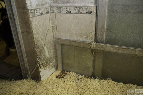 """Hãi hùng xưởng sản xuất mì """"siêu bẩn"""" Trung Quốc - Ảnh 2"""