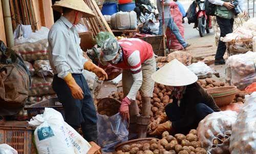 Khoai tây Trung Quốc lại được vào chợ nông sản Đà Lạt - Ảnh 1