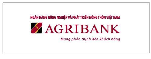 Agribank hoàn thành hầu hết mục tiêu Đề án tái cơ cấu - Ảnh 2