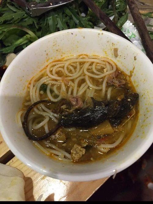 """Ăn lẩu tại Lẩu cua 245 Sài Gòn được """"khuyến mại"""" thêm... chuột chết? - Ảnh 2"""