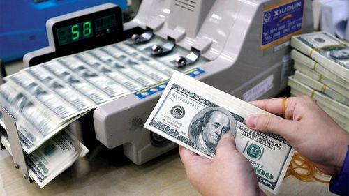 Giá USD/VND hôm nay 25/11 giảm nhẹ - Ảnh 1