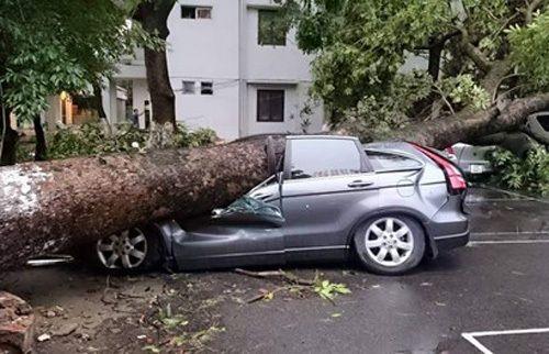 Ô tô bị hư hỏng vì siêu dông tại HN có được bồi thường không? - Ảnh 1