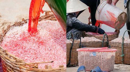 Ruốc nhuộm đỏ bằng hóa chất ở Phú Yên: Bộ Y tế vào cuộc - Ảnh 1
