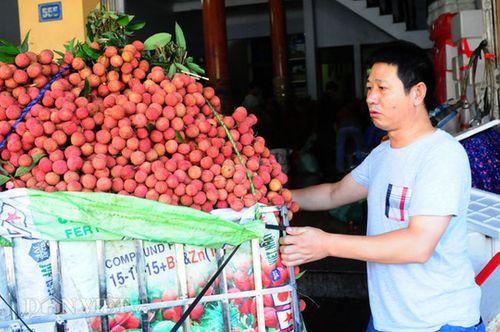 Thương lái Trung Quốc đang làm gì tại Việt Nam? - Ảnh 3