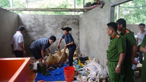 Hơn 1000 kg thịt dê thối, không nguồn gốc suýt vào nhà hàng - Ảnh 2