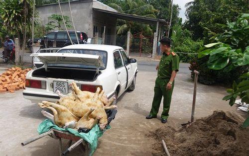 Hơn 1000 kg thịt dê thối, không nguồn gốc suýt vào nhà hàng - Ảnh 1