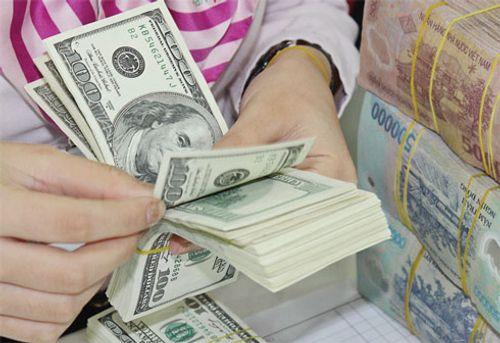Giá USD hôm nay 6/7: Biến động không đáng kể - Ảnh 1