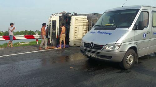 Xe khách va chạm xe tải, hàng chục con trâu náo loạn đường cao tốc - Ảnh 1