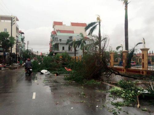 Tin bão số 1 mới nhất: Thiệt hại ở các tỉnh ven biển miền Bắc - Ảnh 1