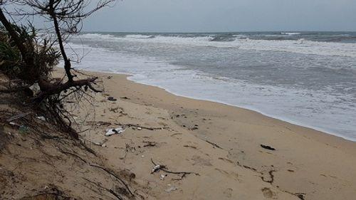 Một sinh viên đại học mất tích khi đi tắm biển - Ảnh 1