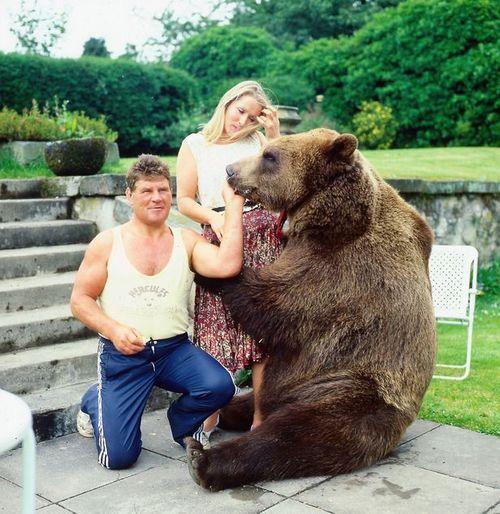 Chuyện cặp vợ chồng nhận nuôi chú gấu đen và coi như con ruột - Ảnh 3