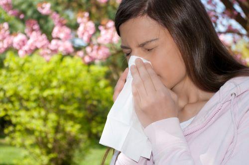Nguyên nhân, triệu chứng của bệnh viêm mũi dị ứng - Ảnh 2