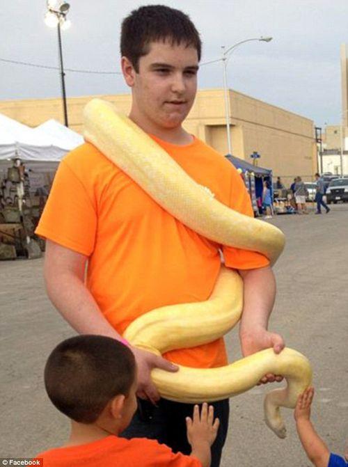 Một thanh niên tử vong vì mặc kệ rắn hổ mang cắn - Ảnh 1