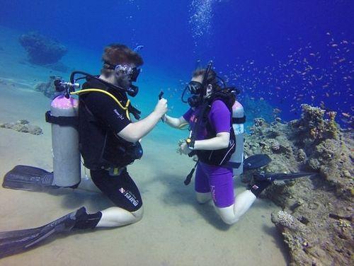 Cặp đôi cầu hôn dưới đáy biển không may bị mắc kẹt - Ảnh 2