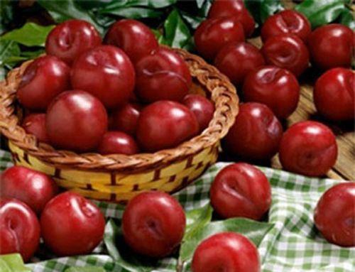 Những loại hoa quả không nên ăn vào mùa hè vì quá nóng - Ảnh 5
