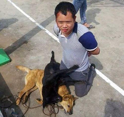 Trung Quốc: Trộm chó bị đánh đập, buộc xác chó vào cổ suốt 9 tiếng - Ảnh 3