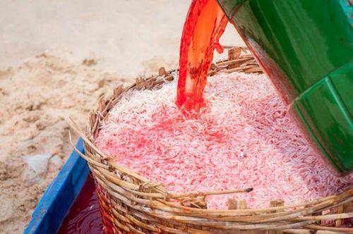 Nguy hiểm như thế nào nếu ăn phải ruốc biển nhuộm phẩm màu? - Ảnh 1
