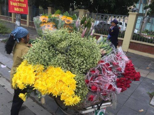Ngắm sắc hoa tươi rộn ràng xuống phố ngày 8/3 - Ảnh 10
