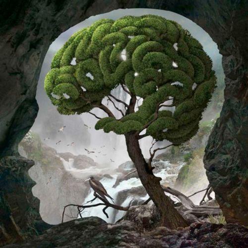 Những tuyệt tác siêu thực về con người và thiên nhiên - Ảnh 10