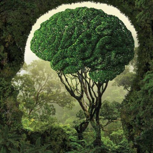 Những tuyệt tác siêu thực về con người và thiên nhiên - Ảnh 2