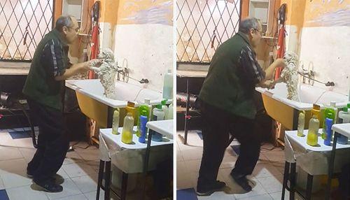 Tan chảy khoảnh khắc nhân viên chăm sóc vật nuôi nhảy cùng chú chó - Ảnh 1