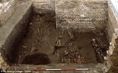 Sửa giảng đường, phát hiện 1.300 bộ xương người - Ảnh 1