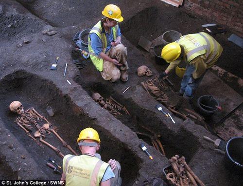 Sửa giảng đường, phát hiện 1.300 bộ xương người - Ảnh 2