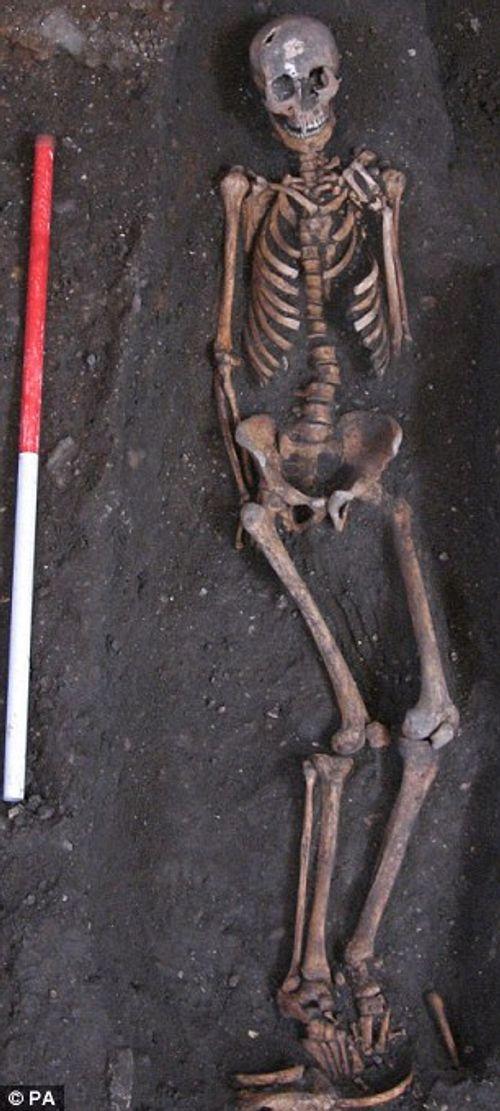 Sửa giảng đường, phát hiện 1.300 bộ xương người - Ảnh 5