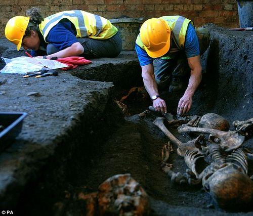 Sửa giảng đường, phát hiện 1.300 bộ xương người - Ảnh 3