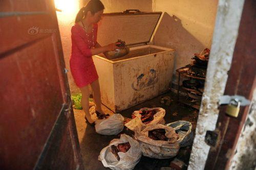 Nhói lòng hình ảnh tại lò giết mổ chó ở Trung Quốc - Ảnh 5