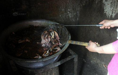 Nhói lòng hình ảnh tại lò giết mổ chó ở Trung Quốc - Ảnh 2