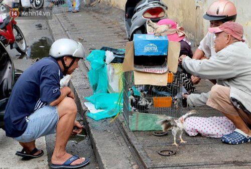 Cận cảnh sự hoang tàn bên trong cao ốc Thuận Kiều Plaza trước khi bị đập bỏ - Ảnh 6