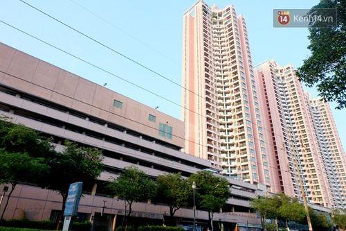 Cận cảnh sự hoang tàn bên trong cao ốc Thuận Kiều Plaza trước khi bị đập bỏ - Ảnh 2