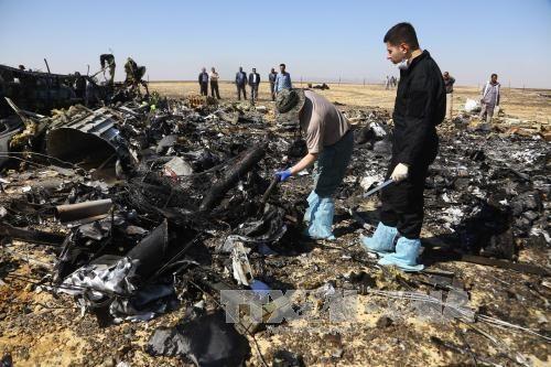 Đã có kết quả giám định pháp y sơ bộ vụ rơi máy bay Nga - Ảnh 1