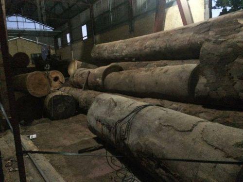 Nỗi đau gia đình bé trai chết thảm trong xưởng gỗ hoạt động không an toàn - Ảnh 2