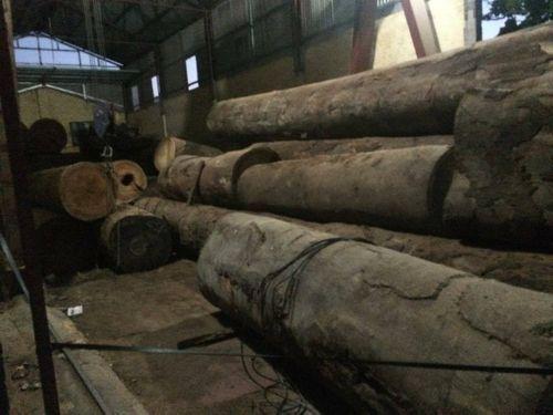 Bé trai chết oan trong xưởng gỗ: Chủ xưởng gỗ bị khép vào tội gì? - Ảnh 2
