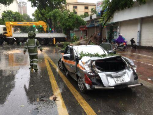 Hà Nội: Cây đổ la liệt đè bẹp dúm nhiều xe ô tô - Ảnh 2