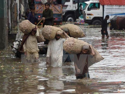 Gần 50 người thiệt mạng tại Ấn Độ và Pakistan vì mưa lũ - Ảnh 1