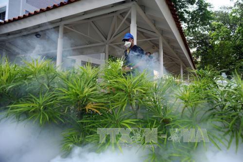 Malaysia thông báo ca nhiễm Zika đầu tiên trong nước - Ảnh 1