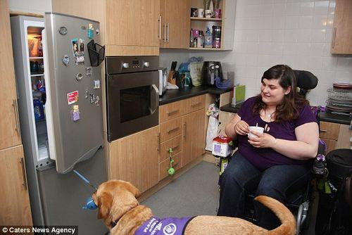 Chú chó thông minh giúp chủ thay quần áo, trả tiền và bật ti vi - Ảnh 5