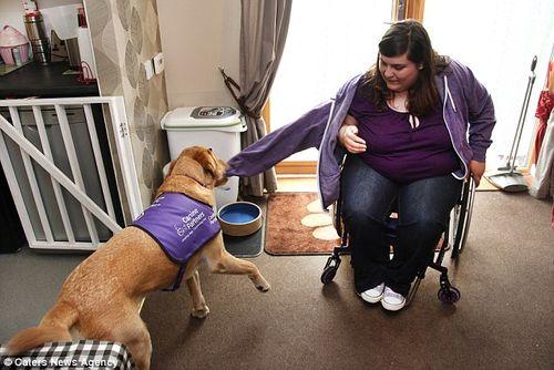 Chú chó thông minh giúp chủ thay quần áo, trả tiền và bật ti vi - Ảnh 8