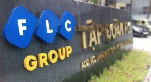 FLC chia cổ tức tỷ lệ 20% vốn cổ phần - Ảnh 1