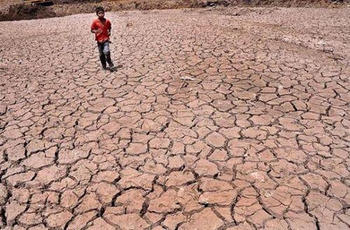 Nắng nóng khủng khiếp, mặt đường ở Ấn Độ biến dạng - Ảnh 3