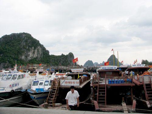 Bão số 1 cách Quảng Ninh 180 km, gần 600 du khách mắc kẹt - Ảnh 1